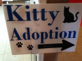 kitty sign